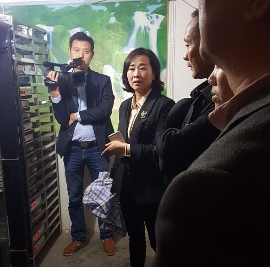 江晓华检查指导有线电视终端工作