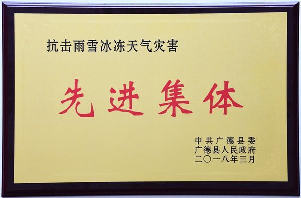 """住建委荣获""""抗击雨雪冰冻天气灾害""""先进集"""
