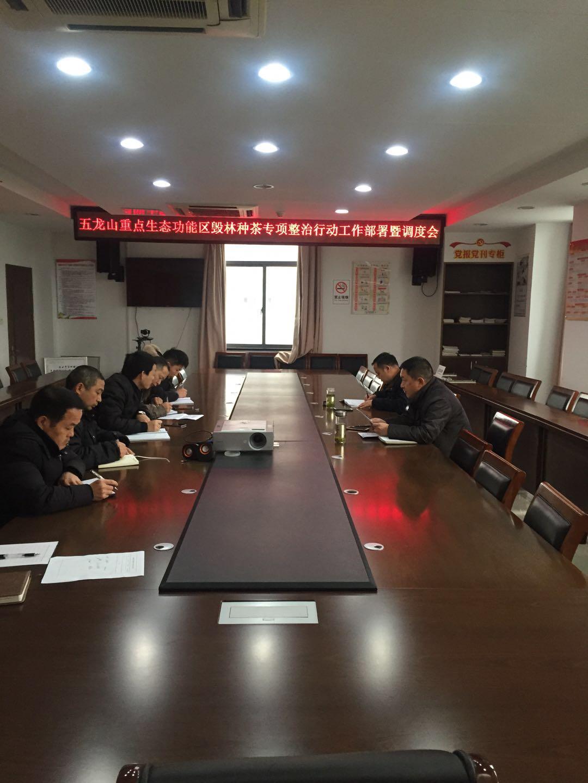 """县林业局持续推进 """"毁林种茶""""专项整治行动"""