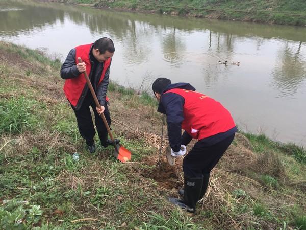 县司法局:红色领航党群共建  美丽乡村更添新绿