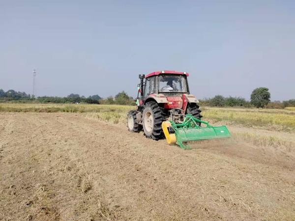 我市开展不同水稻秸秆处理条件下小麦机直播技术试验