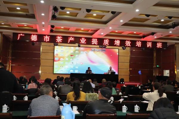 中国农业科学院茶叶研究所专家来广德市开展培训调研活动