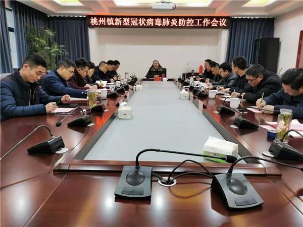 桃州镇新型冠状病毒肺炎防控工作会议