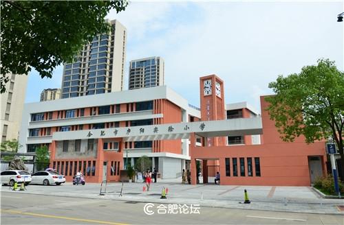 合肥市庐阳实验小学新校落成 首批报名工作7月11日启动