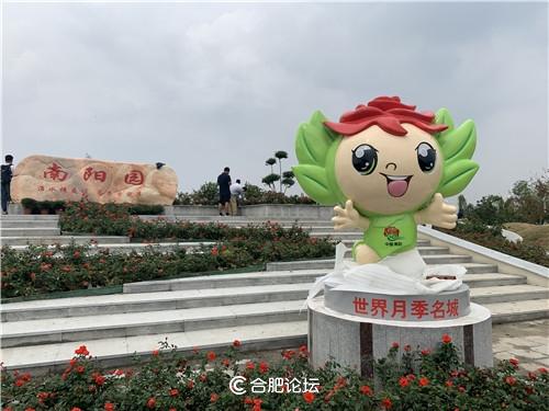 """""""花儿开了幸福来""""第十届中国(阜阳)月季展览会即将启幕"""