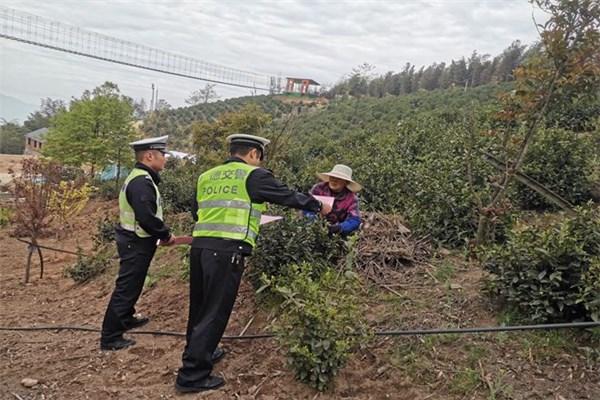 """卢村交警开展交通安全""""进茶园""""活动"""