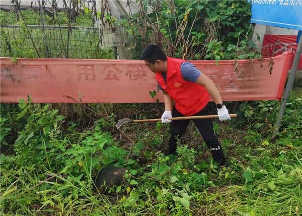 泾县马鞍村:党员志愿者环境清理在行动,助推乡村振兴
